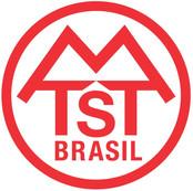mtst Logo