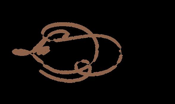 Logo domaine dentelle.png