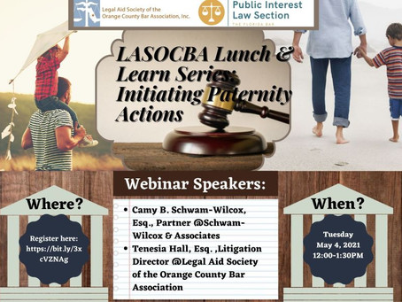 LASOCBA Lunch & Learn Series, Initiating Paternity Actions