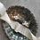 Thumbnail: Petite Gala floral pins set