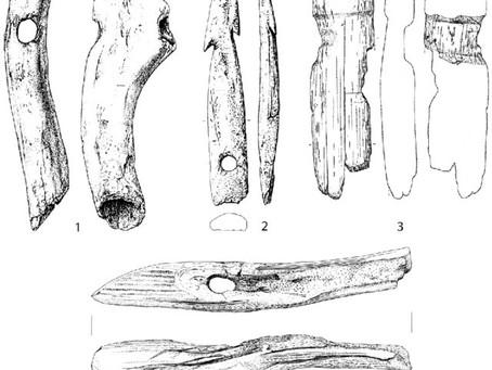 Ertebolle Culture; Mesolithic ingenuity