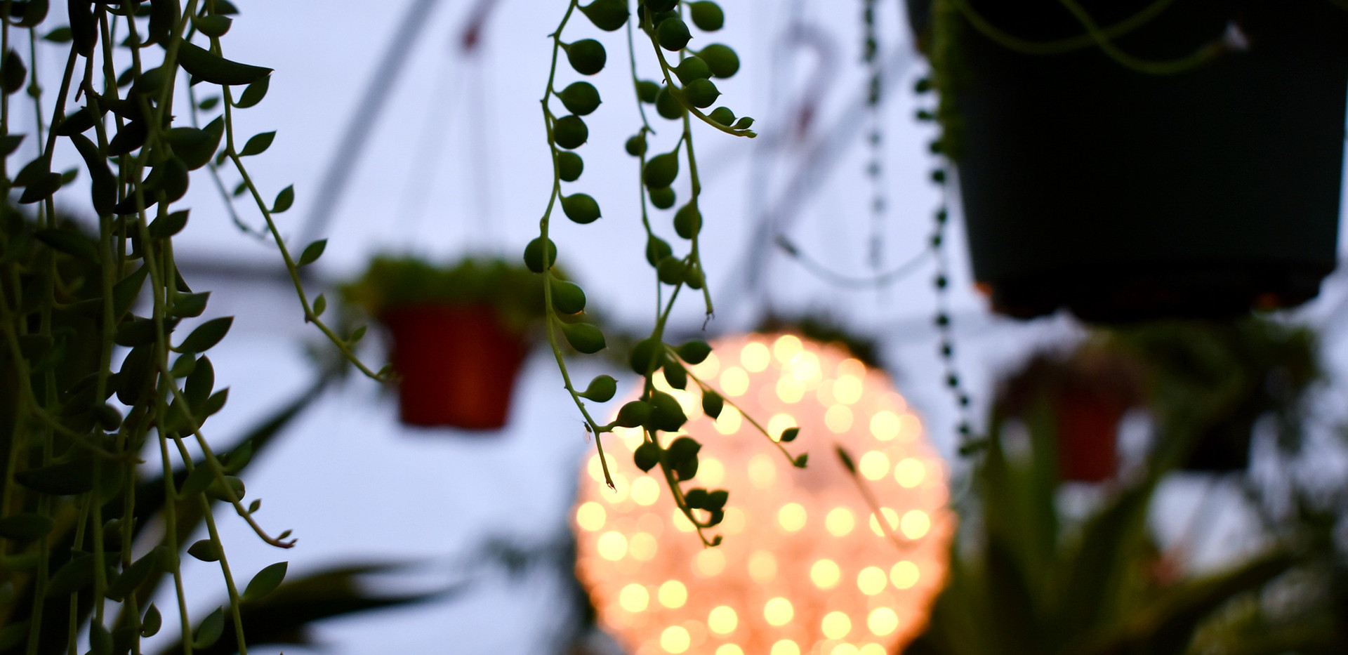 String of Pearls at Dusk