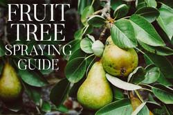 FRUIT TREE SPRAYING GUIDE website image.