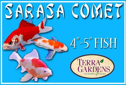 terragardens | Pond Fish