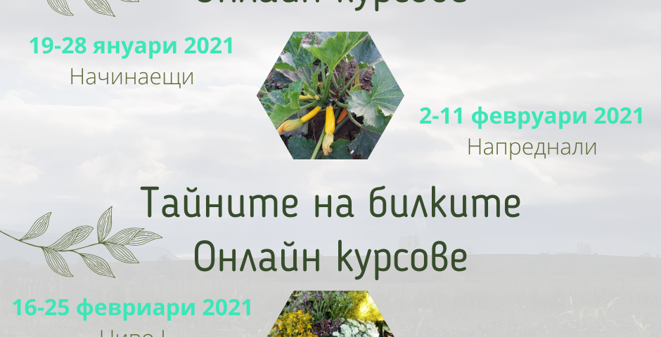 Устойчиво земеделие