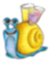 escargot-verres.png