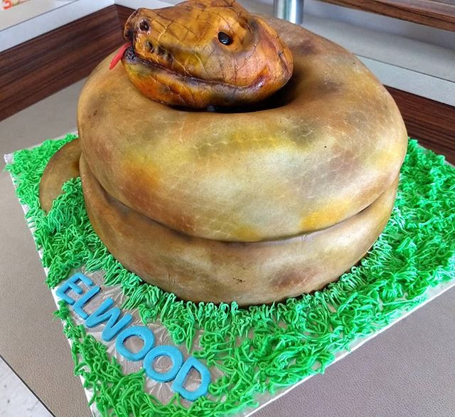 2 birthday Elwood! #chocolatecake #eggfr