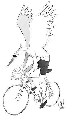 FigCoppi.png