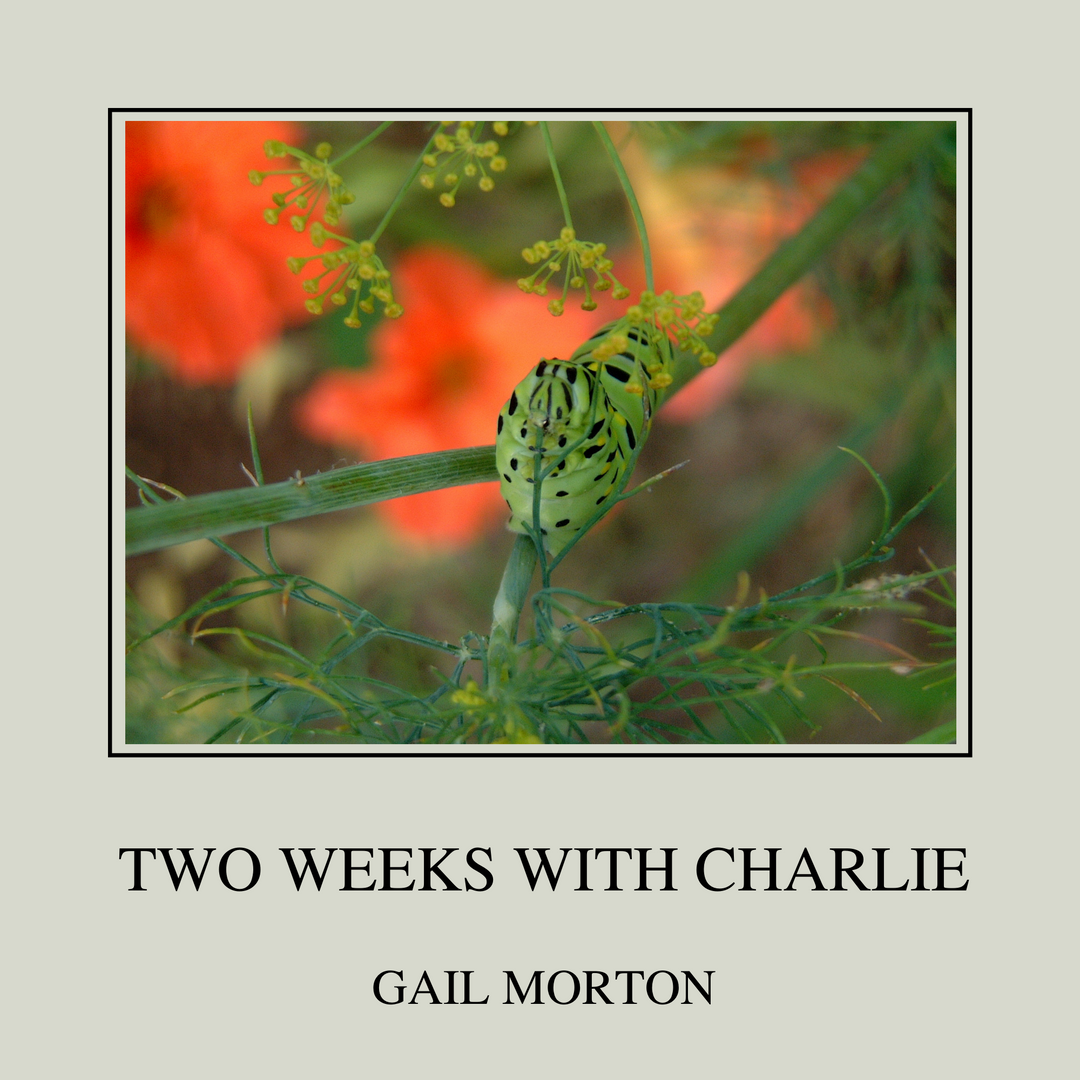 Two Weeks with Charlie