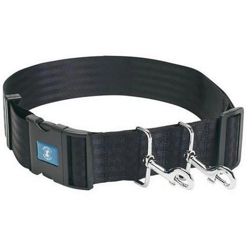 Company of Animals Hands Free Training Belt