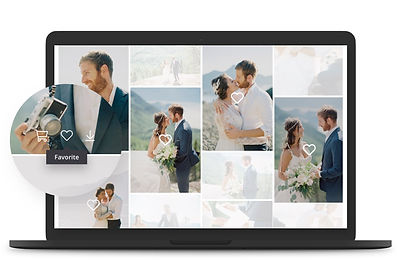 example of online wedding photography gallery