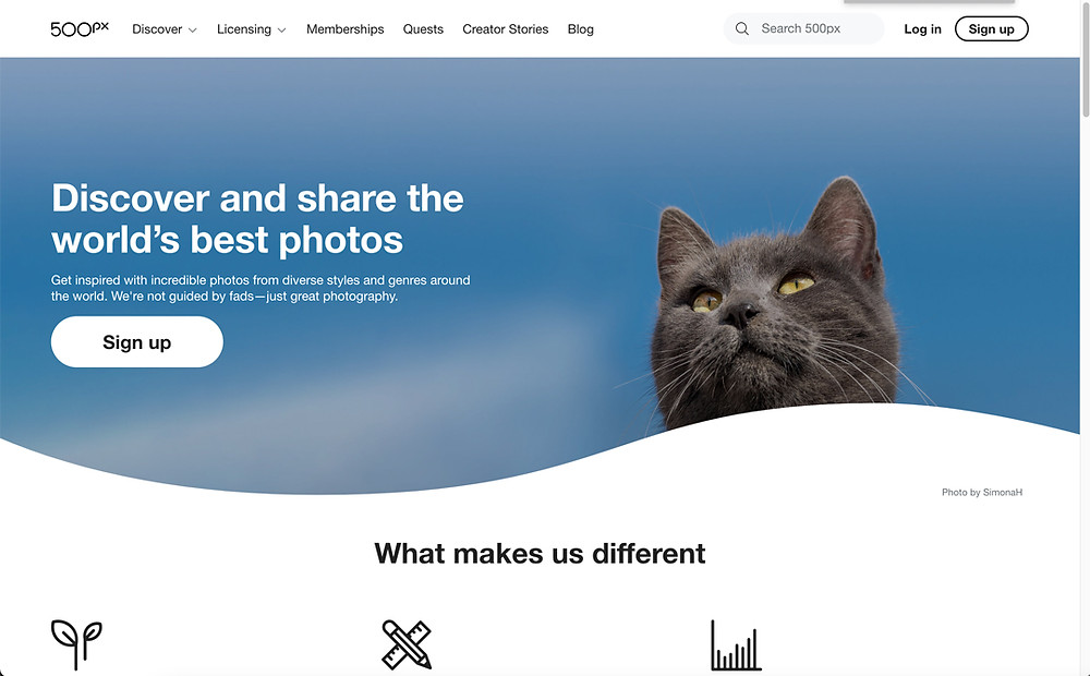 screenshot of 500px home page