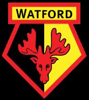 Watford: 13th in EPL