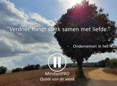 Quote van de week #36 - Verdriet