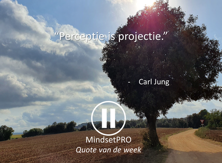 Quote van de week #22 - Projecteren