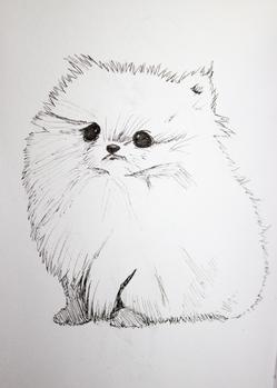 Puff Dog