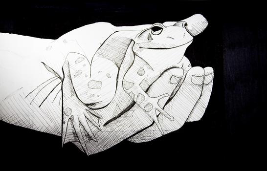 frogman.png