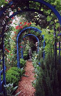 Fragrant Pollinator Garden