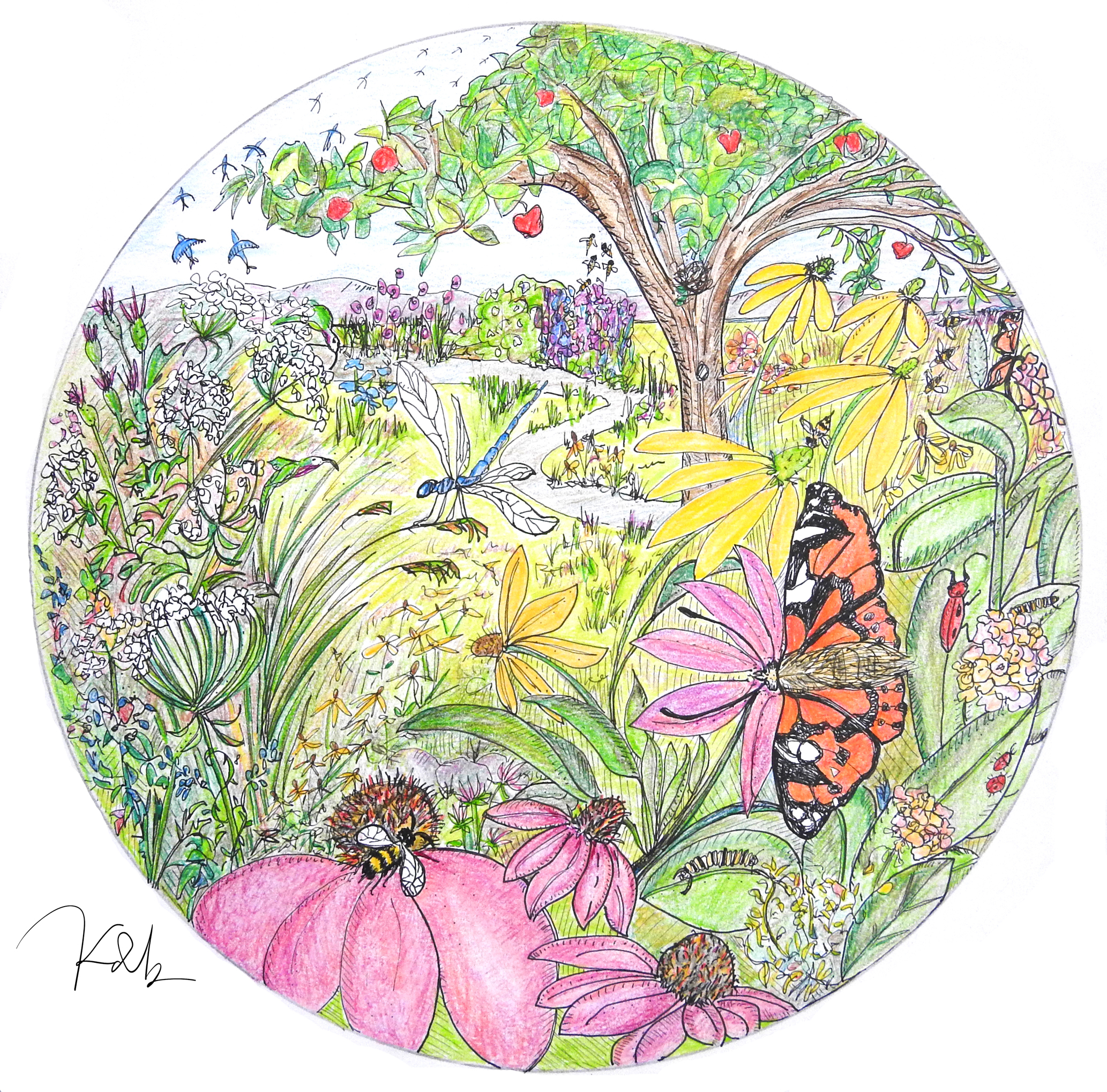Pollinator EYESPY IllustrationSMALL
