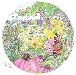 Pollinator EYESPY IllustrationSMALL
