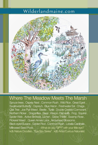 Where the Meadow Meets the Marsh