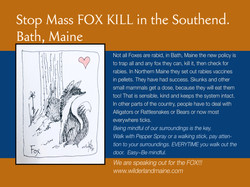 kdb SAVE THE FOX