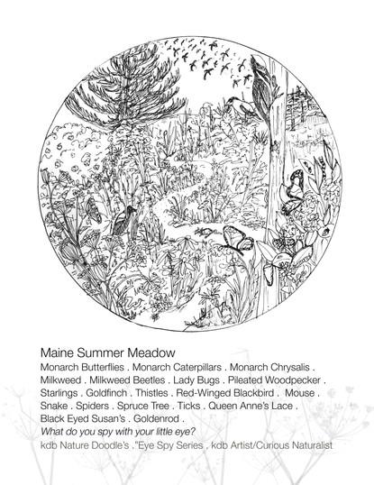 EyeSPY Maine Summertime Meadow Color Sheet