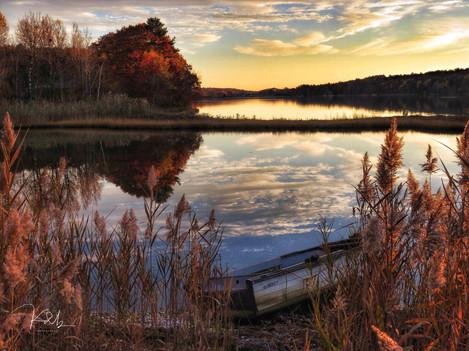 Autumn New Meadows