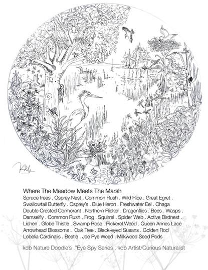 Meadow meets the Marsh