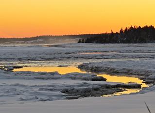 Winter Wonder Wilderland...
