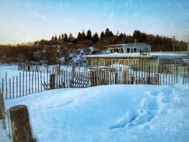 Winter, Kelp Shed