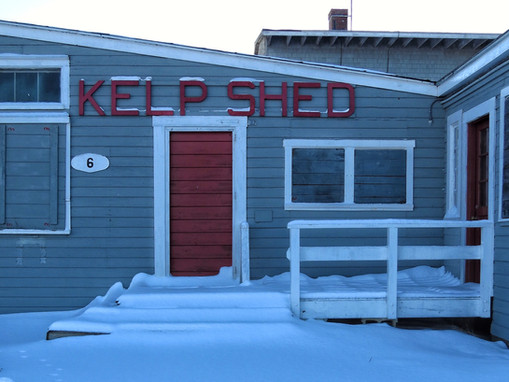 Kelp Shed