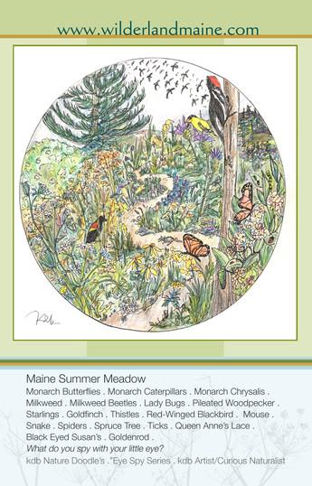 EyeSPY Maine Summertime Meadow