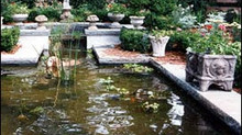 Water Features...