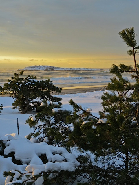Seaa Smoke and Snow at Dawn