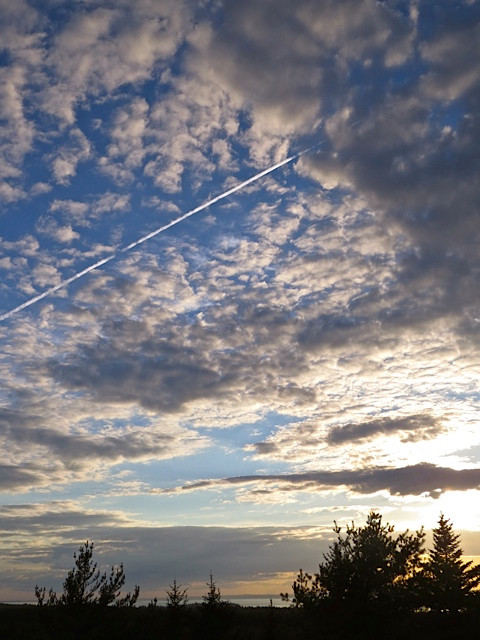 Contrails in the evening Sky