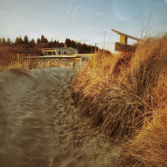 Kelp Shed Autumn