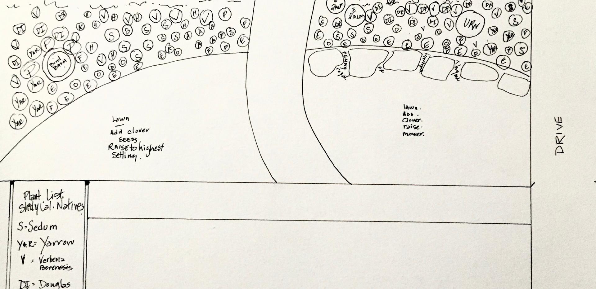 Lauras Garden Plan