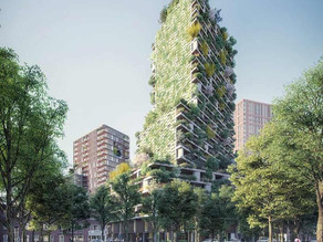 [Reproduced from The Guardian]Utrecht rooftops to be 'greened' with plants and mosses in new plan