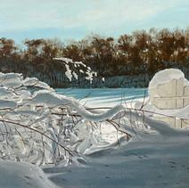 Schoolhouse Pond Winter.jpg