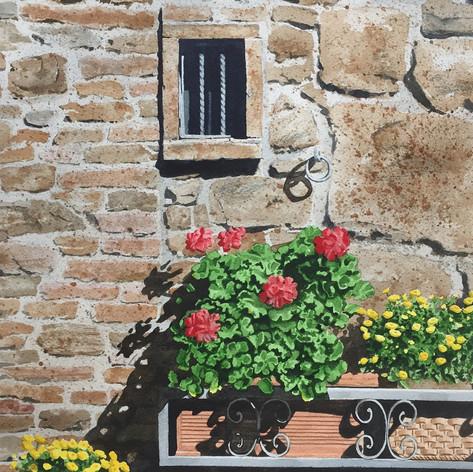 Montalcino Window.jpg