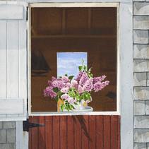 Lilacs on Nantucket Pier.jpg