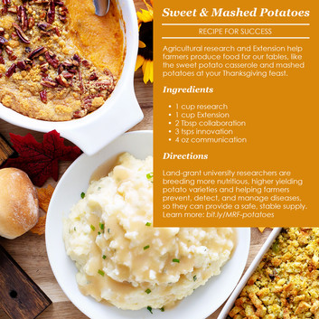 Thanksgiving Recipes for Success
