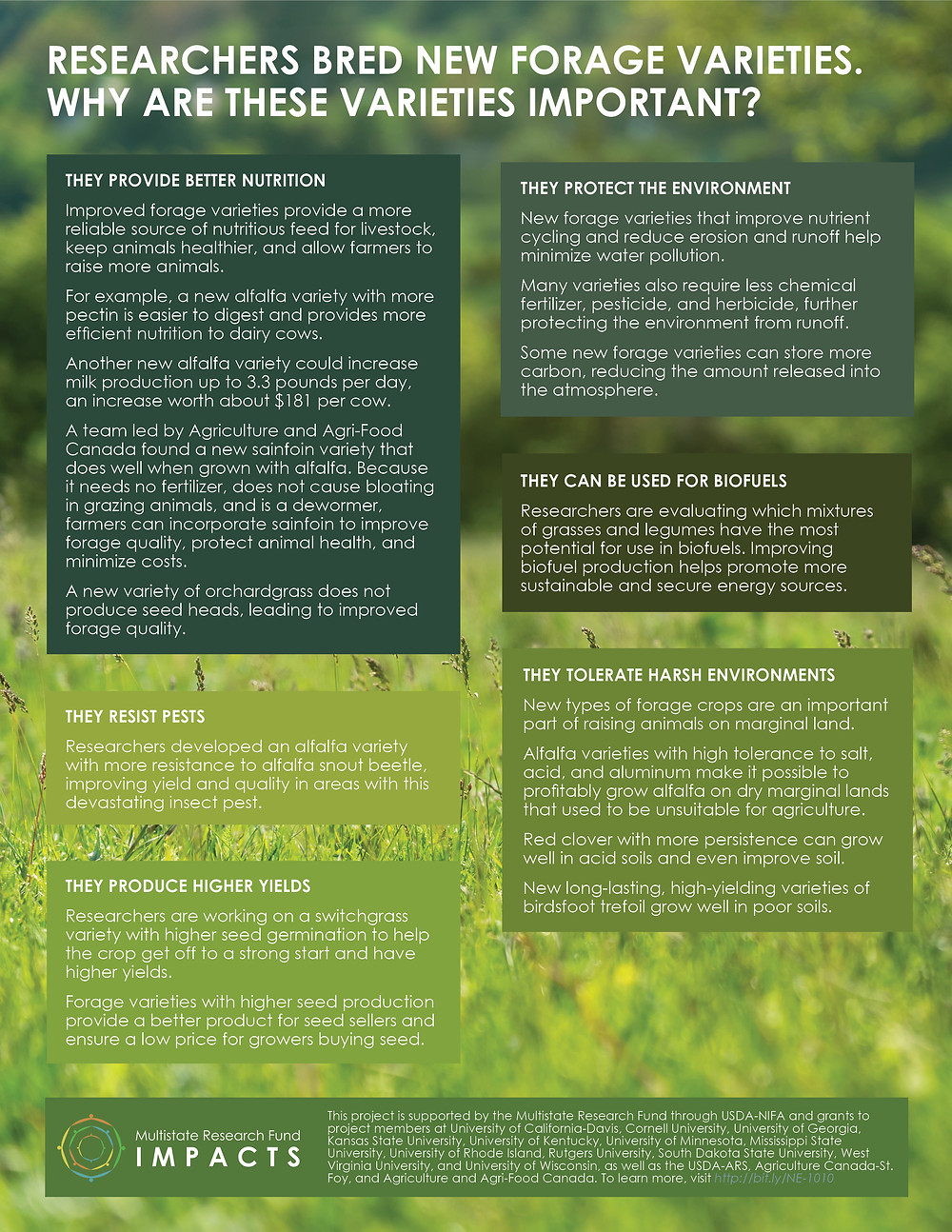 Improving Forage Crops. Click to view/download a PDF of the Impact Statement.