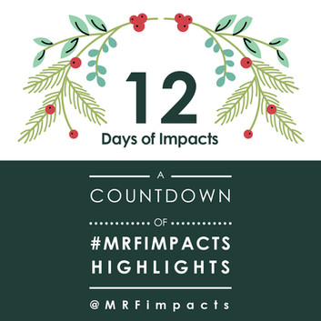 12 Days of Impacts
