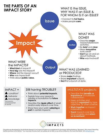 Impact Writing Workshop Handout_2021.jpg