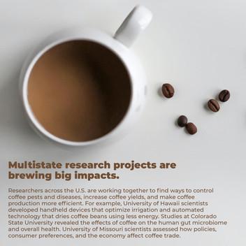 Brewing Big Impacts