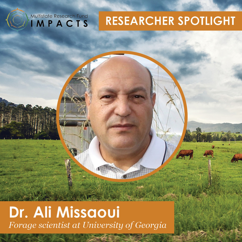 Researcher Profile_Website Post Graphic
