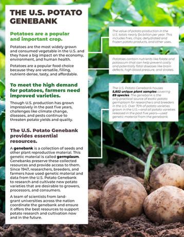 The U.S. Potato Genebank