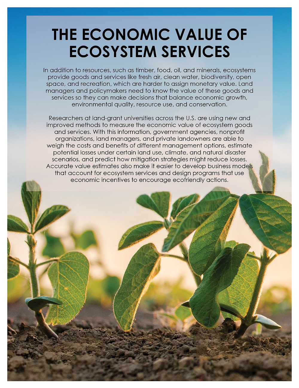 The Economic Value of Ecosystem Services. Click to view/download a PDF of the Impact Statement.
